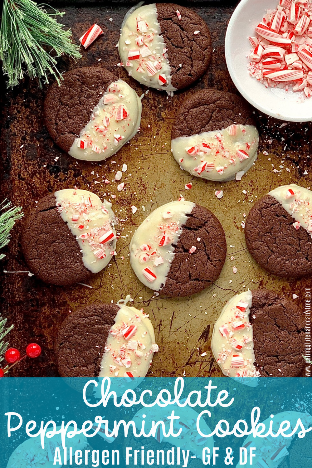 chocolate peppermint cookies dipped in white chocolate and sprinkled with crushed candy canes on a cookie sheet