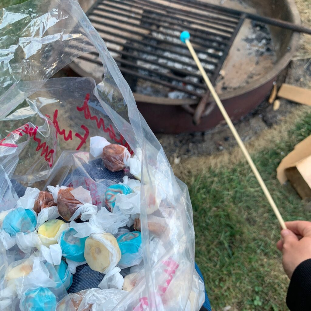 Heating taffy on a stick over a campfire.