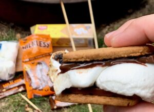 Smores by the campfire with melted chocolate