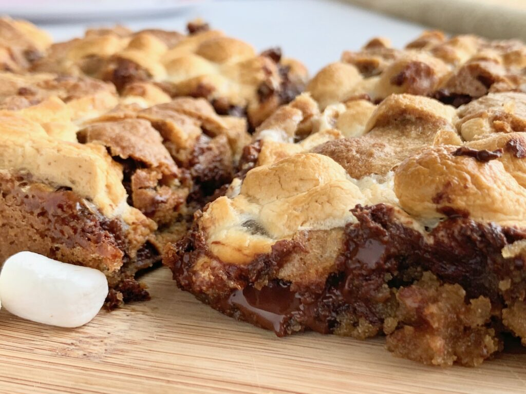 Ooey gooey melted chocolate in a s'more cookie bar