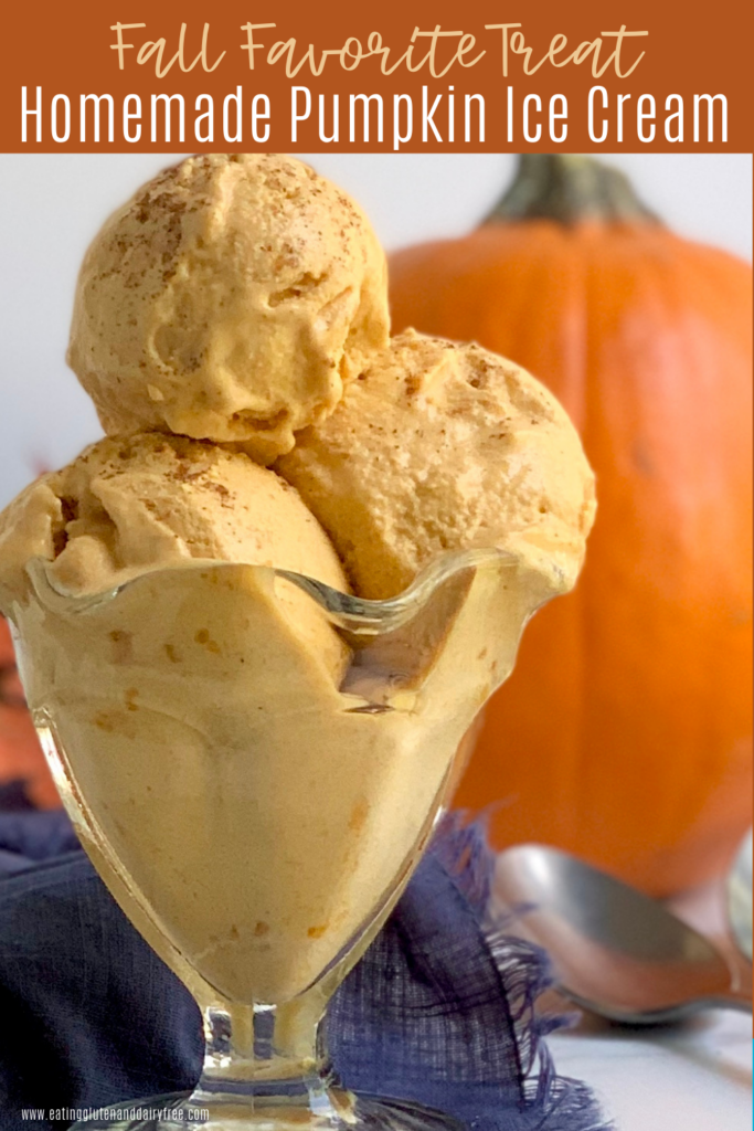 An old fashioned ice cream bowl with 3 big scoops of pumpkin ice cream.